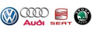 VAG (Audi , Seat, Skoda , Volkwagen )