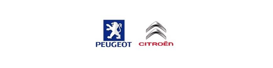 PSA ( Citroen , Peugeot )